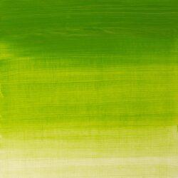 Winsor & Newton Winton oljefärg 200ml Chrome green hue 145 Tub & Färgprov